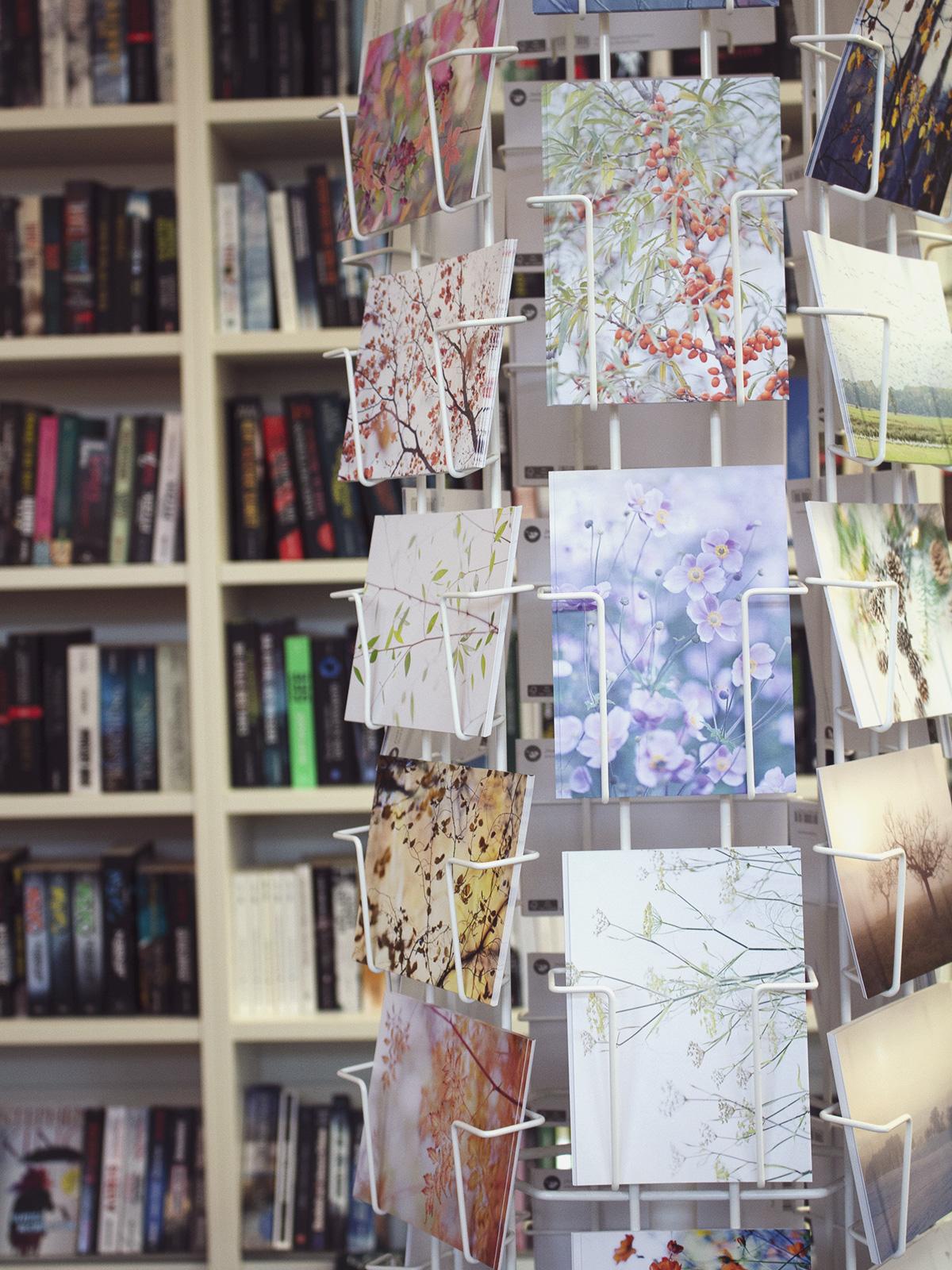 Herbstliche farbenfrohe Postkarten in einem Postkartenständer vor einer Bücherwand